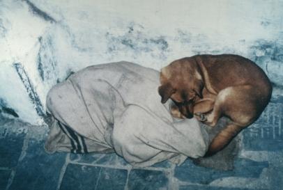 enfant-rue-avec chien