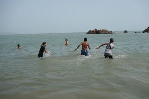 Swimming and playing into the sea